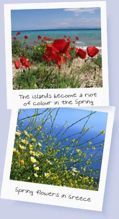 Spring in Poros